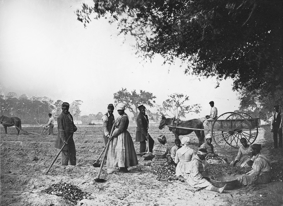 slave ownership in the southern united Slavery occurred in the north, as well, but was outlawed in the non-border union states, while slavery continued in union states bordering southern slave states northern states felt slavery should be outlawed, though, many did not wish to compete with former slaves for job opportunities and this sentiment was used politically in anti-black campaigns in.