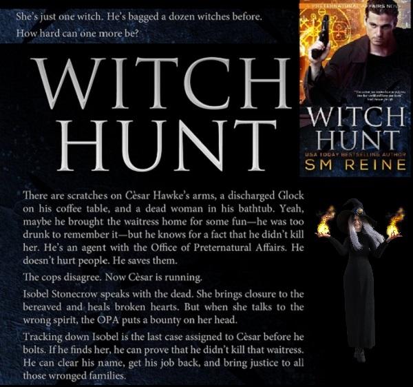 Urban Fantasy Witch Hunt By S M Reine Virily